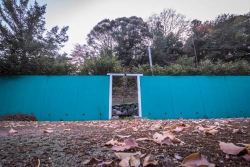 テニスコート撮影スタジオ  (4)