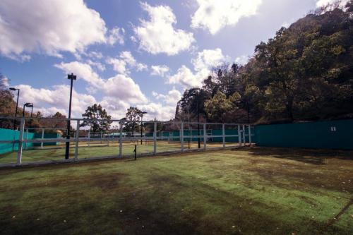 テニスコート撮影スタジオ  (6)